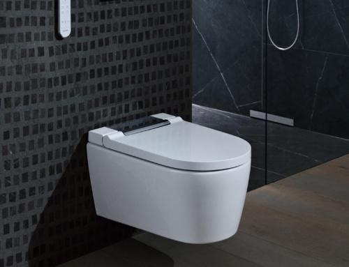 Sie möchten ein neues WC  ?